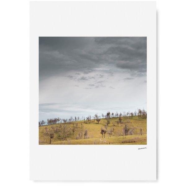 Murmungee Basin - Erin Davis Hartwig